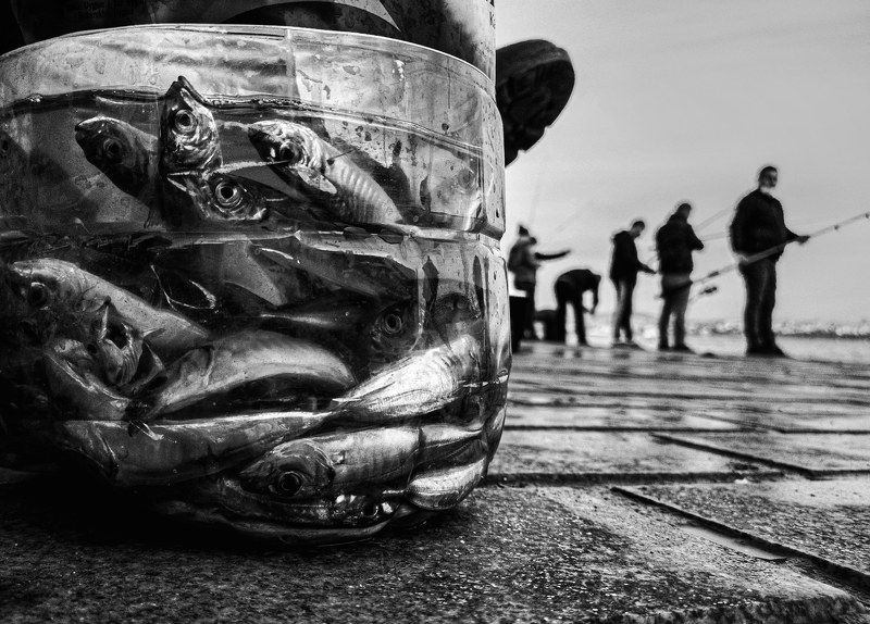 Fishes and fishermanphoto preview