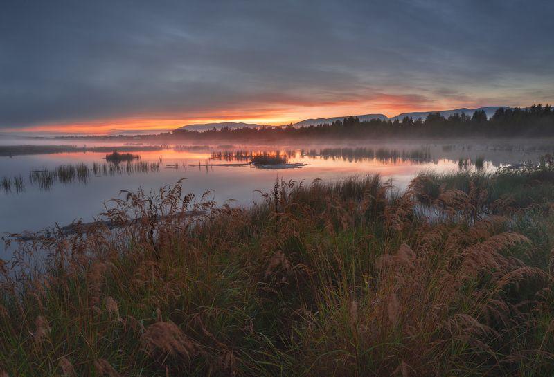 пейзаж,рассвет,кольский,север,осень,цвет,туман,отражение,озеро,хибины,горы Имандра на рассвете photo preview