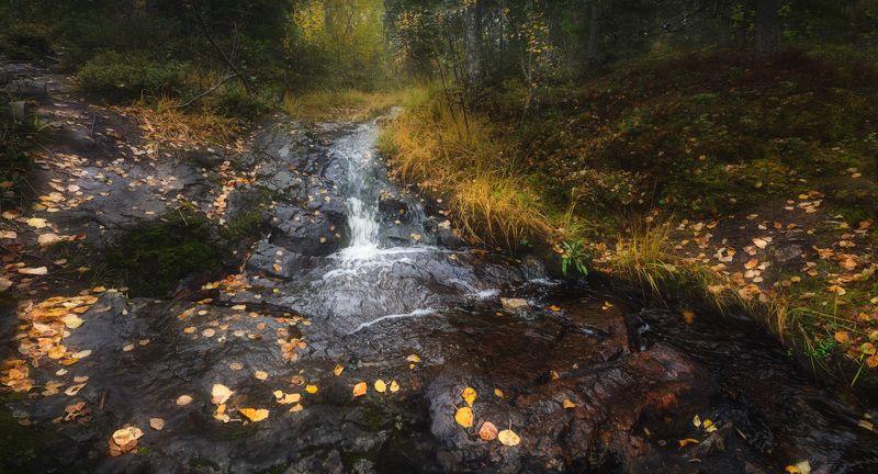 кивакка, паанаярви, карелия Горный ручейphoto preview