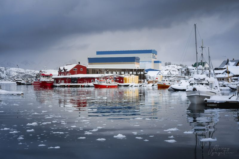 lofoten, norway, norge, cold, winter, ice, water, mirror, boats, fishing Отражение со льдомphoto preview