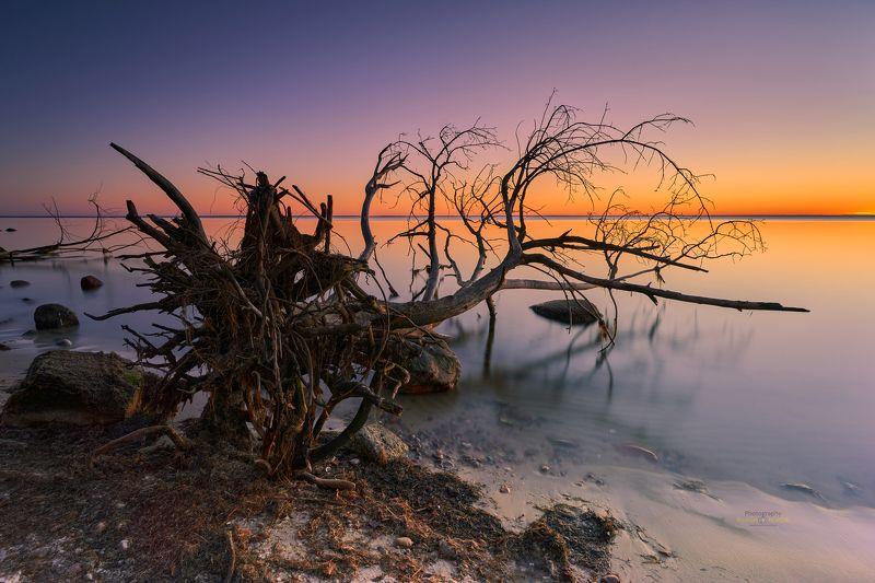 Baltic Sea Baltic Sea фото превью