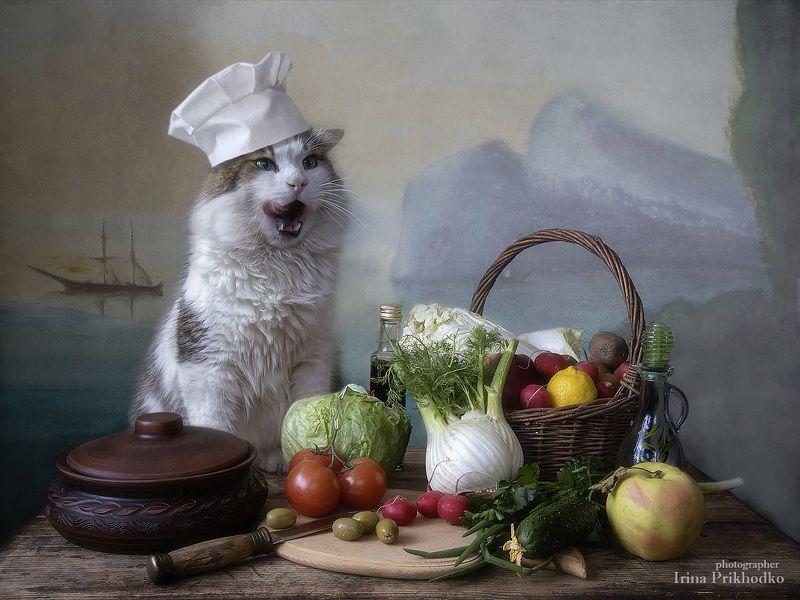 натюрморт, котонатюрморт, овощи, кот Лёва, питомцы, постановочное фото Пост- он для всех!photo preview