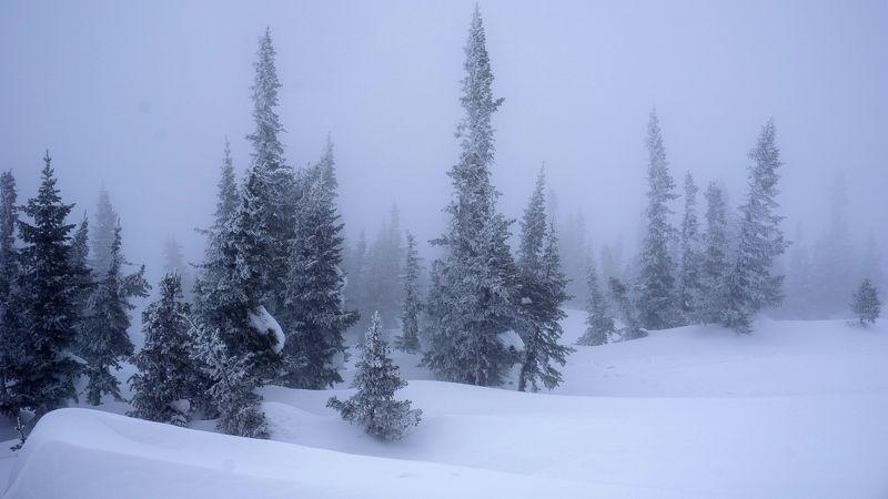 кузбасс, шерегеш, снег, туман, зима, горы, лес Шерегешские туманы.photo preview