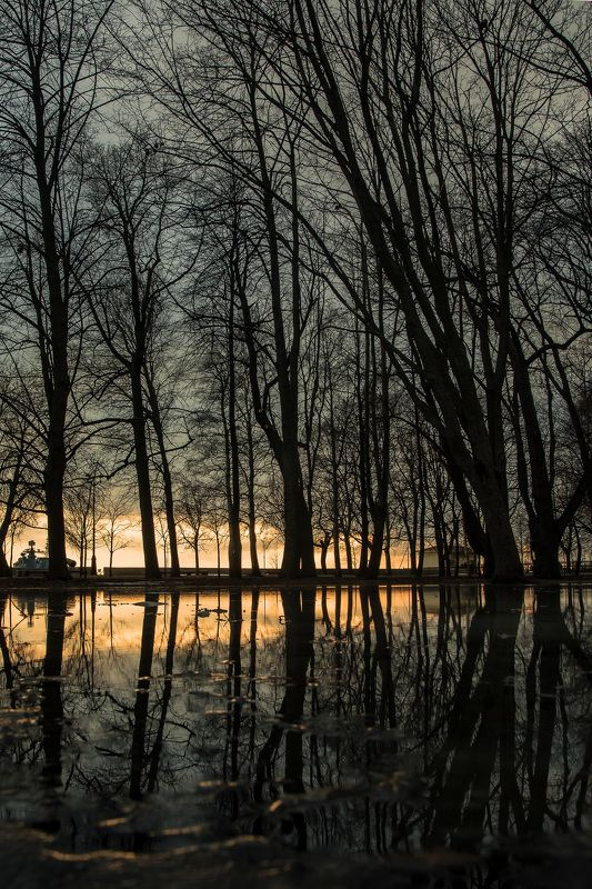 весна, парк, разлив, пейзаж Весеннее зазеркальеphoto preview