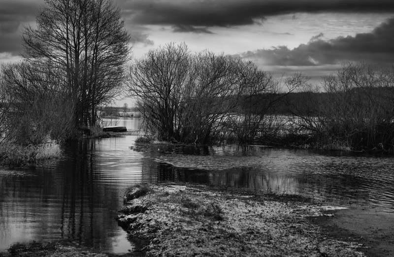 River Narewphoto preview