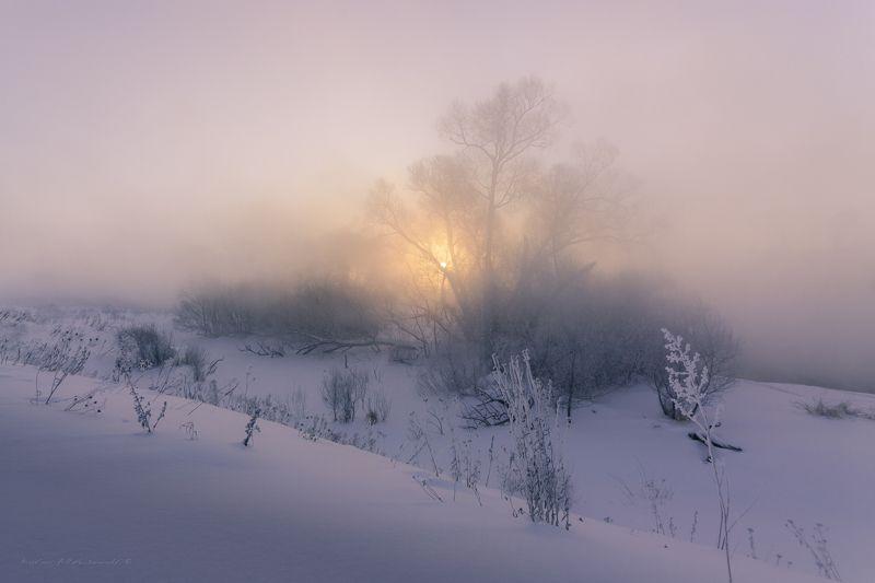 туман, московская область, утро, природа, пейзаж, зима, мороз, солнце Однажды зимойphoto preview