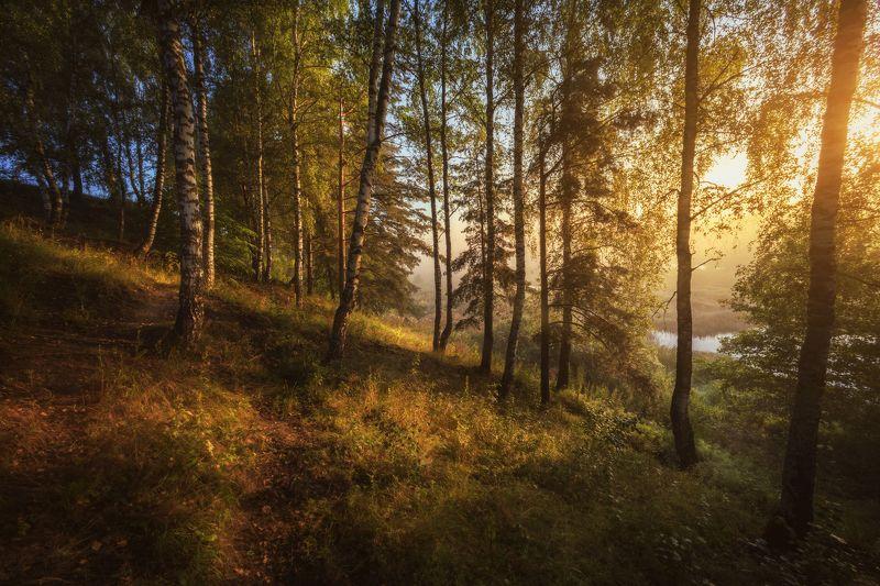 озеро, горы, лес, природа, закат, рассвет, красота, приключения, путешествие Запахом утра наполни свой день !photo preview