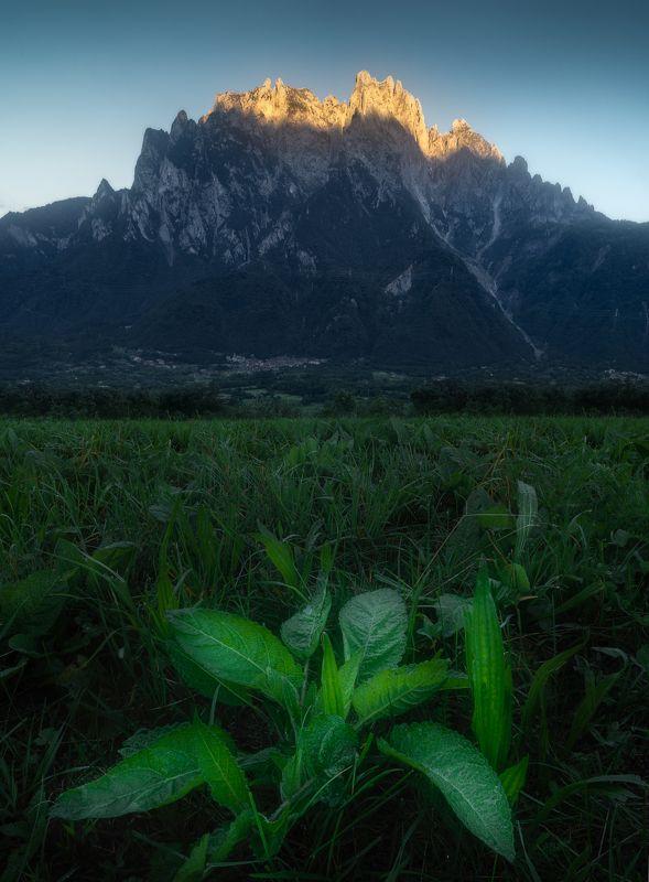 italy, landscape, concarena, vallecamonica, пейзаж, горы, италия Flames of Concarenaphoto preview