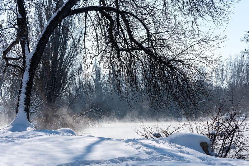 зима Последний снег этой затяжной зимы.. Есть надеждаphoto preview