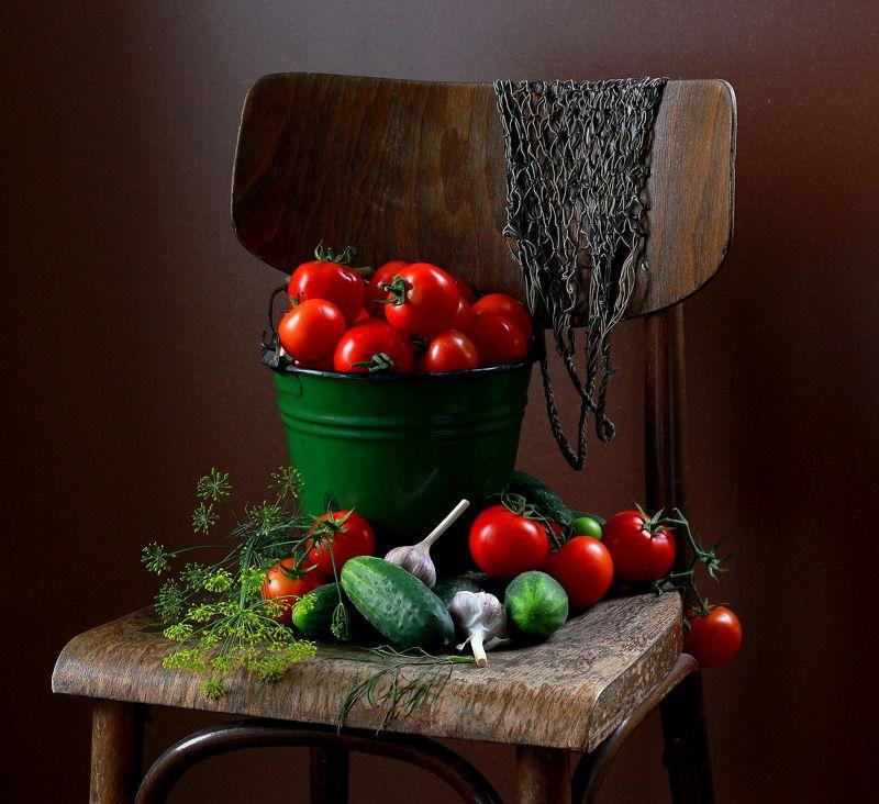 натюрморт, фотонатюрморт, лето, овощи, огурцы, помидоры наталья казанцева Старый стулphoto preview