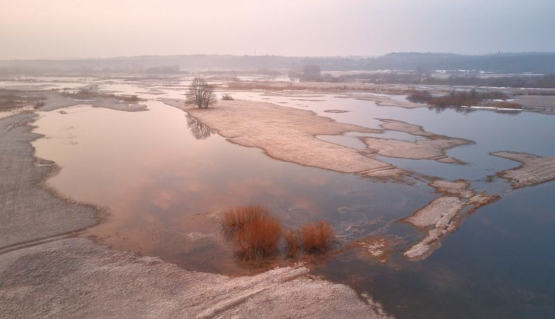 беларусь, весна, март, неман, разлив, рассвет, туман, утро Утро на весеннем Неманеphoto preview