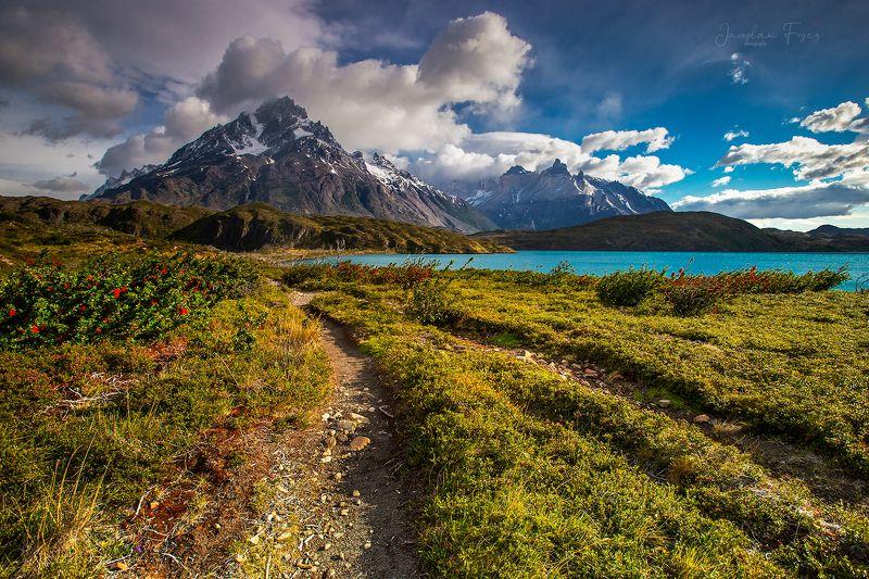 Cerro Paine. Patagonia.photo preview