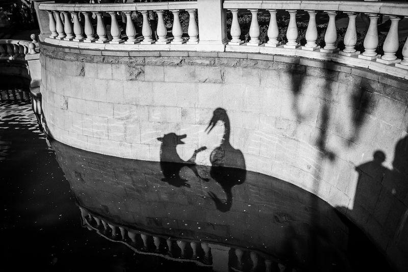 тени, абстракция, чб, чернобелое, пейзаж, сюжет, shadows, moment, cityscape Диалог.photo preview