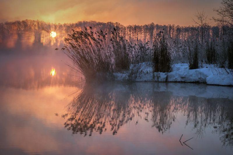 шатура, утро, пар, туман, солнце, рассвет, вода, трава, деревья, мороз, холод Шатурская мистерия 2photo preview