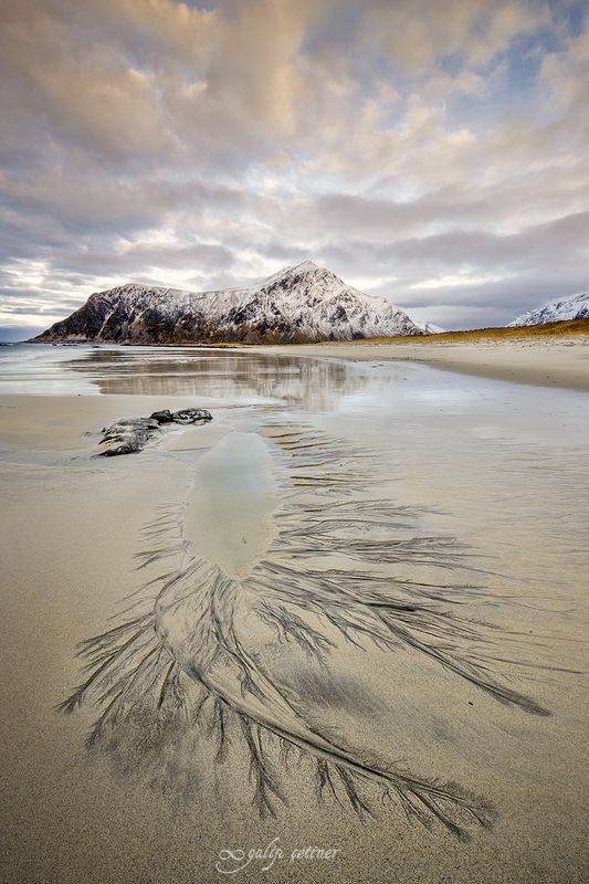 landscape, seascape, winter, beach, nature Lifelines in the sandphoto preview