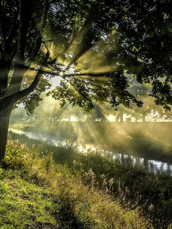 Утро на реке (Мандау).photo preview