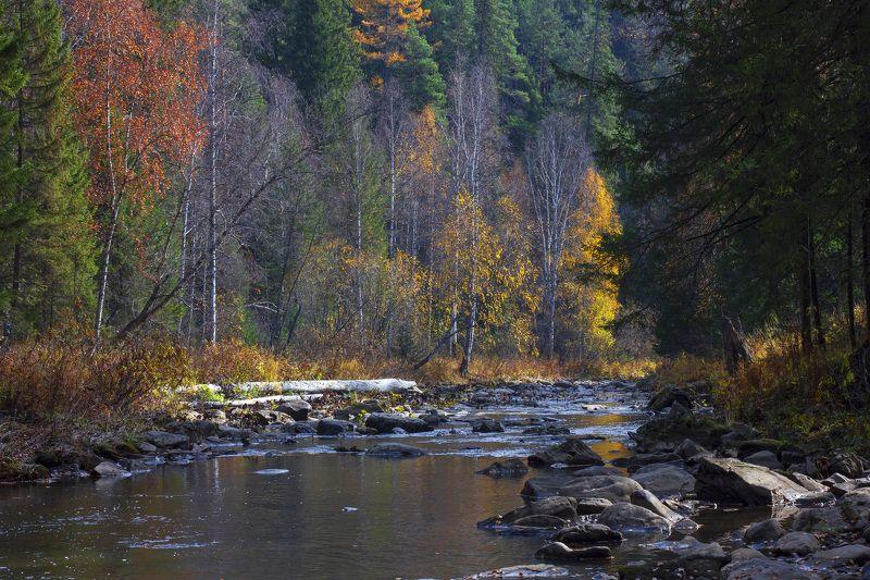 пейзаж, природа, осень, река, горная река, Южный Урал, Республика Башкортостан, лес, горы Осень на горной рекеphoto preview