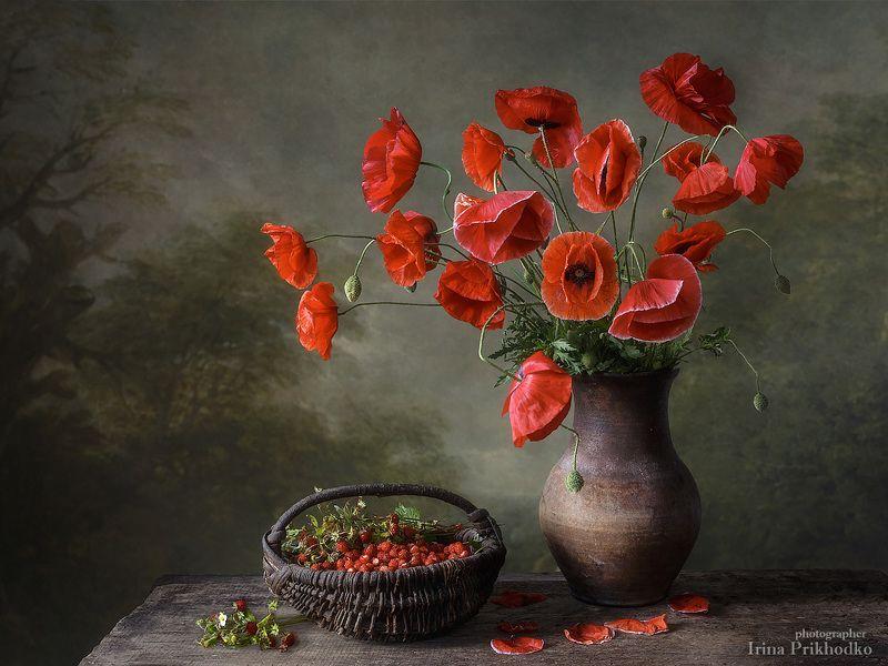 натюрморт, лето, красные маки, букет, цветы, ягоды, земляника Летний теплый вечерphoto preview