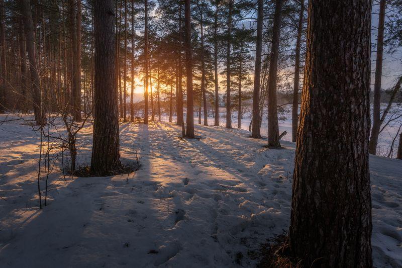 пейзаж, природа, весна, закат, Московская область, весна пришла Мартовский закатphoto preview