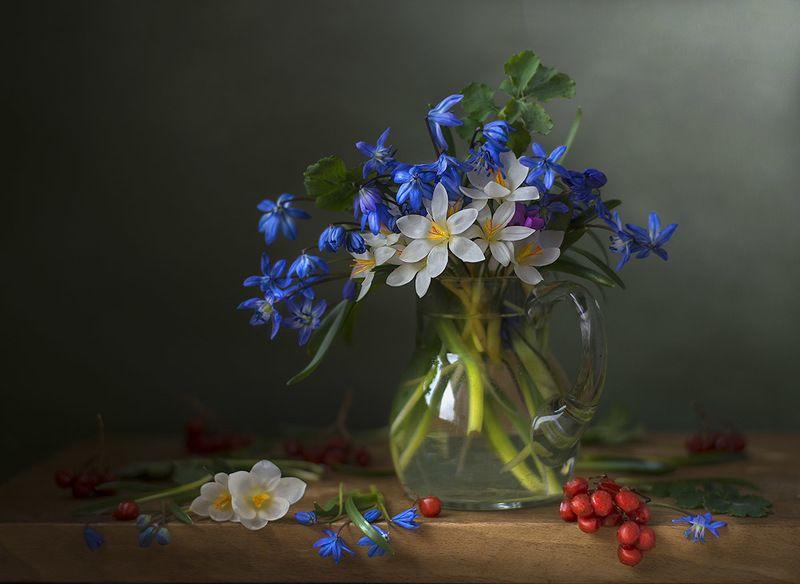 натюрморт с пролесками,с крокусами,весна,букет,голубые,синие цветы,художественное фото,искусство. Букетик с первоцветами.photo preview