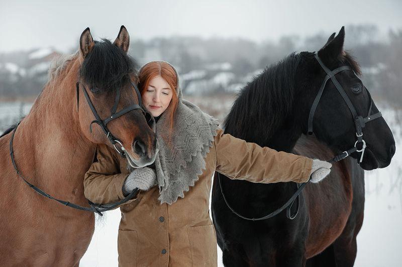 портрет, лошади, зима, конюшня, удмуртия, деревня ***photo preview