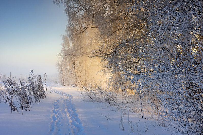 Мороз и солнце.photo preview