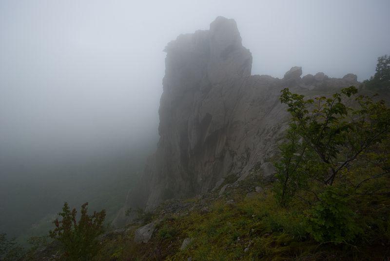 гора змейка, кмв, минеральные воды, туман Августа туманphoto preview