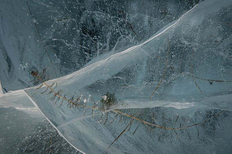 природа, лед застывшая грацияphoto preview