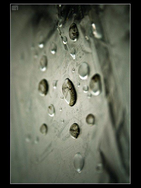 капли, вода Капли-2photo preview