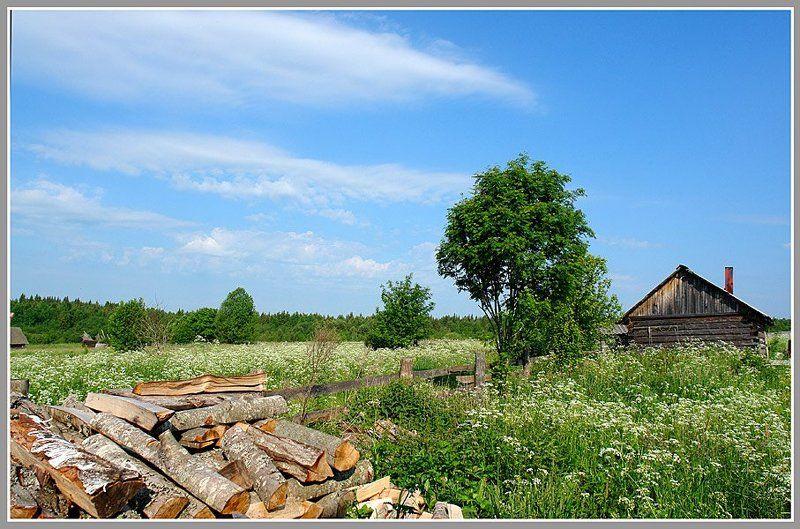 Лето в Зараменье.photo preview