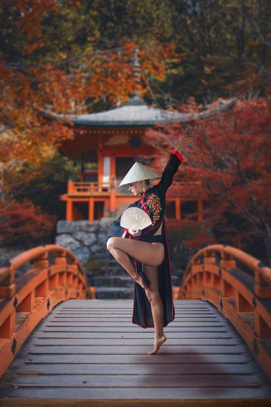 Japan bridgephoto preview
