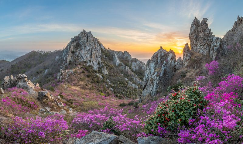 mountains,peak,hiking,spring,blossom,deokryongsan,korea Blooming Time, Deokryongsanphoto preview