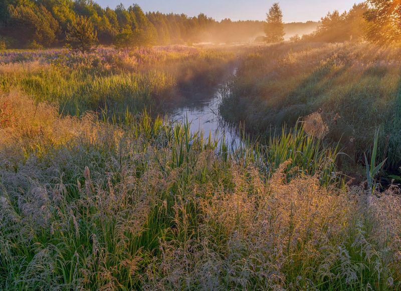 Фототуры с Владимиром Рябковым, #topnature #russpasibo #magic_shots #lovelyRussia #sunset_vision #exclusive_sky  #exclusive_shots #loves_russia2 #photoarena_nature #nature_sultans #nature_perfection #rsa_sky #rsa_sunset #photorussia #rsa_naturepics #sunse Июньское утро.photo preview