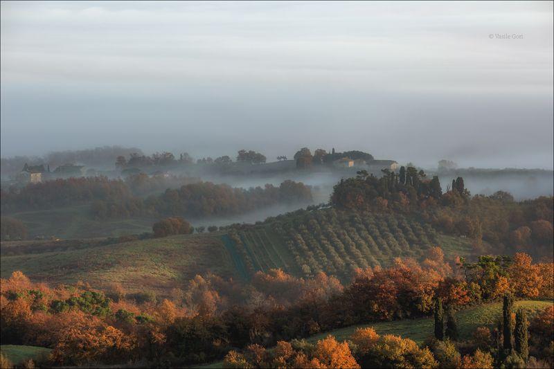 italy,туман ,italia,утро,италия,тоскана,кипарис,toscana,осень,tuscany,cipressi,belvedere Утро Тосканыphoto preview