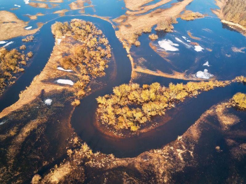 беларусь, весна, март, неман, разлив, река, утро Разлив на Неманеphoto preview