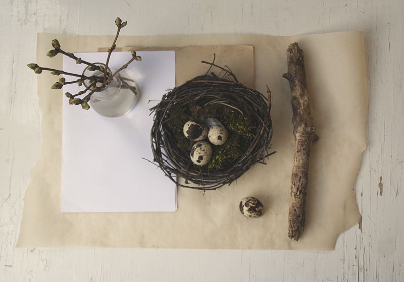 натюрморт, минимализм Веснаphoto preview