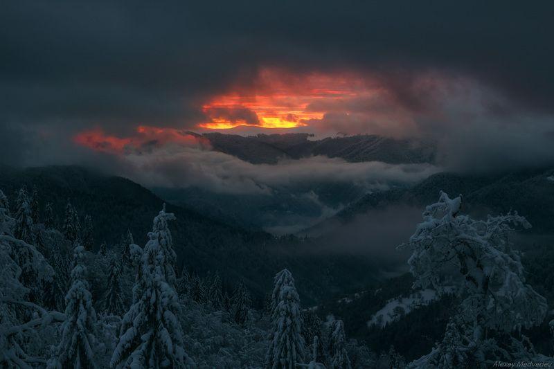 гори, закарпаття, зима, карпати, свидовець, смереки, сутінки, лопухів, лопухов, усть чорна, карпаты, закат, огненный, зимний Зарождение светаphoto preview
