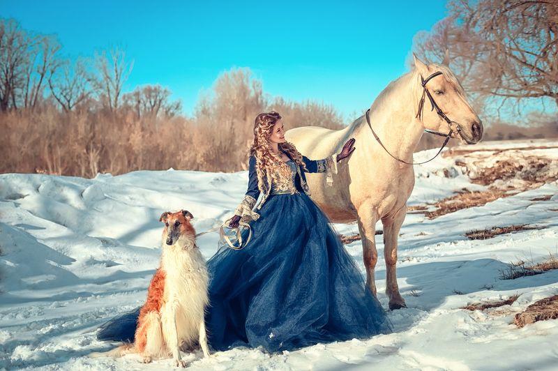 гончая, царское, люди, красиво Царская охотаphoto preview