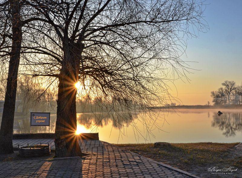 утро, восход, солнце, лучи, апрель, туман Утро доброе фото превью