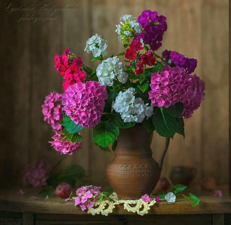 художественное фото,натюрморт,букет с цветами,флоксы,гортензии. Гортензии с флоксами.photo preview