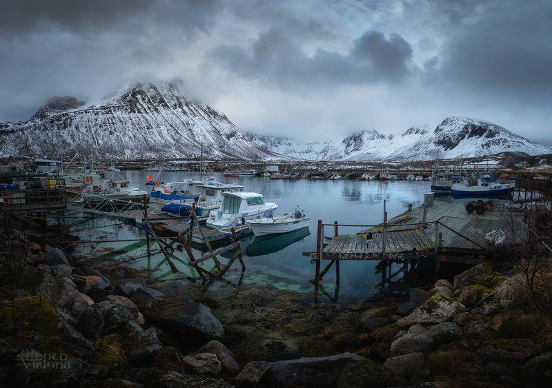 harbor,sea,mountains,norway,north,arctic, Arctic harborphoto preview