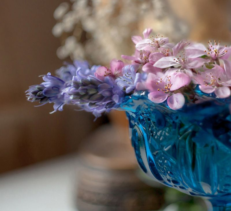 макро,цветы,весна,природа,флора, Тычинки.photo preview