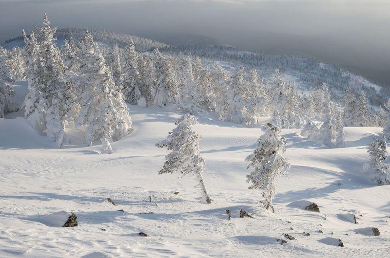 ...Снежный ветер...photo preview