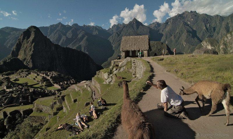 Мачу-Пикчу, Перу, путешествие, приключение, туризм, лама, горы, Анды, Америка, шагнивнеизведанное Мачу-Пикчу, из серииphoto preview