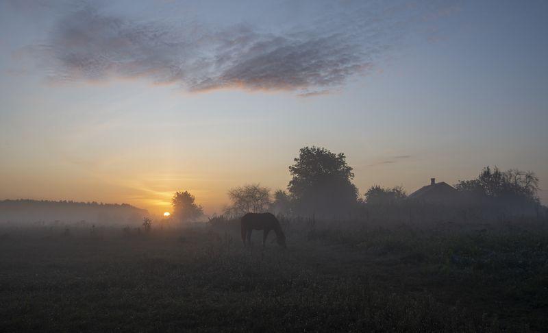 рассвет в деревне...photo preview
