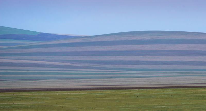 Монголия  ...photo preview