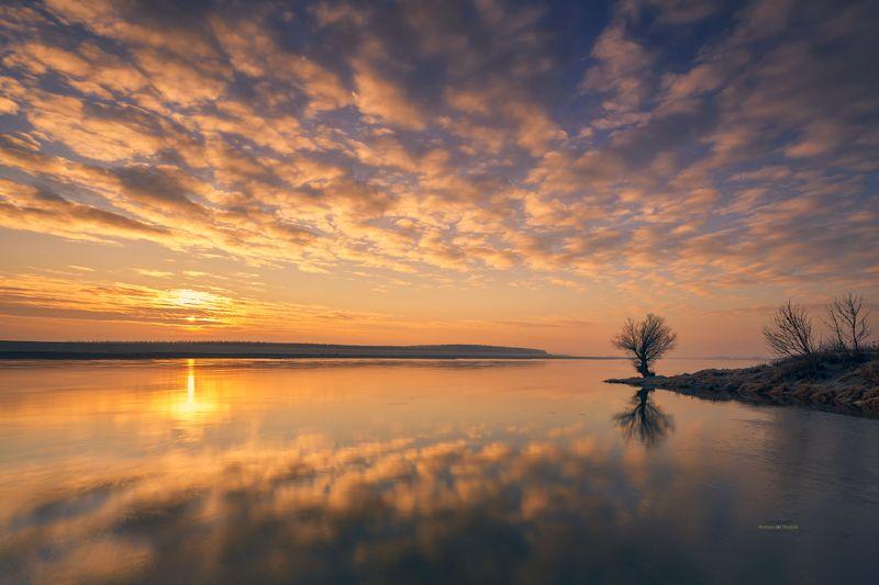 tree, sunrise, landscape, water, river, sun, clouds, Lone Tree. фото превью