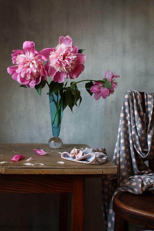 натюрморт, цветы, пионы ***photo preview