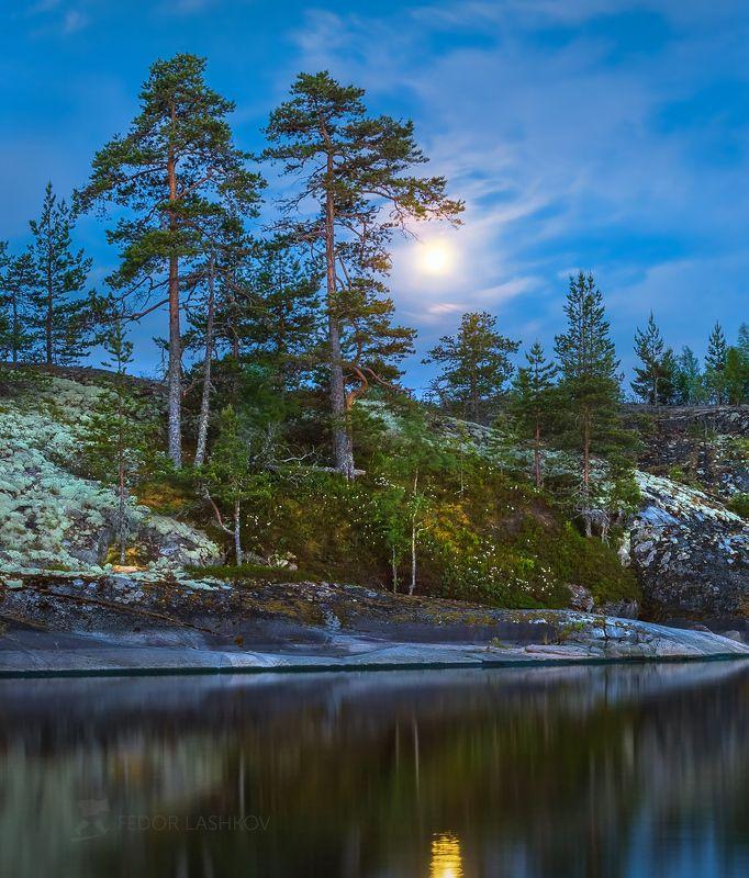 ладожское озеро, карелия, шхеры, лето, остров, гранит, луна, белые ночи, вода, сосна, дерево, берег, мох, луна, лунное, Белая ночь на шхерахphoto preview