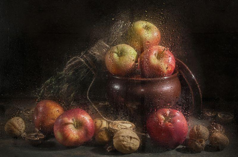 яблоки,орехи,капли,тёмный,еда,горшочек Яблочкиphoto preview